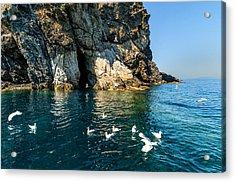 Elba Island - Seagulls Coast 3 - - Costa Dei Gabbiani 3 - Ph Enrico Pelos Acrylic Print