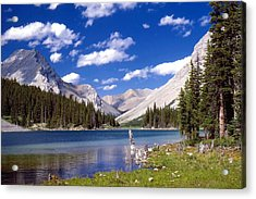 Elbow Lake Acrylic Print by Jim Sauchyn
