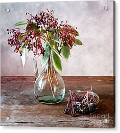 Elderberries 01 Acrylic Print by Nailia Schwarz