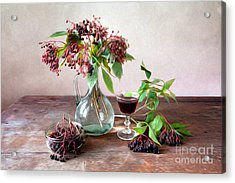 Elderberries 02 Acrylic Print by Nailia Schwarz