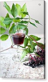 Elderberries 05 Acrylic Print by Nailia Schwarz