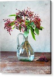 Elderberries 06 Acrylic Print by Nailia Schwarz