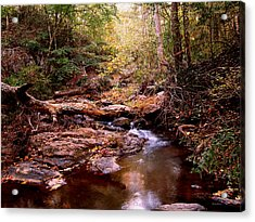Acrylic Print featuring the photograph Elders Bridge by George Bostian