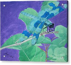 Electric Dragon Acrylic Print by Jennifer Taylor Rogerson