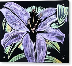 Electric Lily Phase Two Acrylic Print