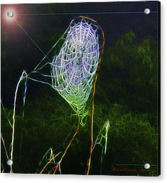 Acrylic Print featuring the photograph Electric Web In The Fog by EricaMaxine  Price
