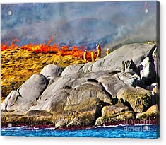 Elements Acrylic Print by Joanne Kocwin