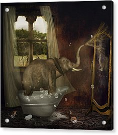 Elephant In Bath Acrylic Print