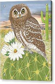 Acrylic Print featuring the digital art Elf Owl by Walter Colvin