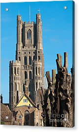 Acrylic Print featuring the photograph Ely Cathedral by Andrew  Michael
