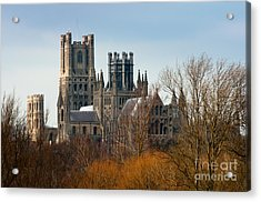 Acrylic Print featuring the photograph Ely Cathedral Scenic by Andrew  Michael