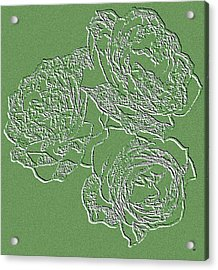 Embossed Roses Acrylic Print by Will Borden