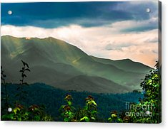 Emerald And Gold Acrylic Print by Scott Hervieux