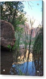 Emerald Pool- Zion National Park Acrylic Print by Michael Bartlett