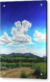 Acrylic Print featuring the painting Empire Ranch by Drusilla Montemayor