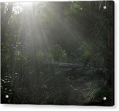 Enchanted Glen Acrylic Print