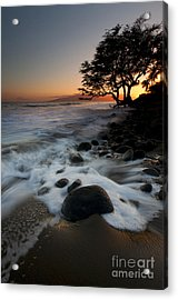 Encompassed Acrylic Print by Mike  Dawson