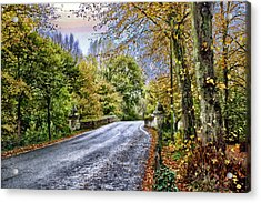 England Country Side Acrylic Print by Neil Campbell
