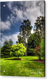 English Countryside  Acrylic Print by Adrian Evans