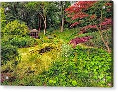 English Garden  Acrylic Print by Adrian Evans