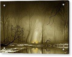Enigmatic Passage Acrylic Print by Igor Zenin