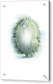 Enlightment Of The Willow Acrylic Print by Nafets Nuarb