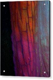 Acrylic Print featuring the digital art Enter by Richard Laeton