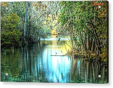 Entrance To Swanee Acrylic Print by Ronald T Williams