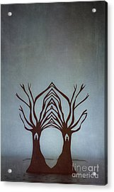Entwined Acrylic Print by Catherine MacBride