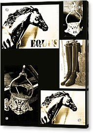 Equestrian Licensing Art Acrylic Print