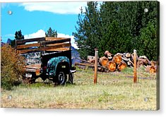 Acrylic Print featuring the photograph Estes Park Back Yard by Rosemarie Hakim