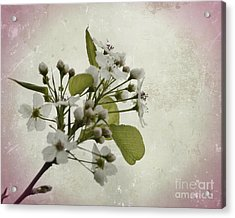 Etched In Love Acrylic Print
