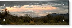 Evening In Tucson Acrylic Print by Kume Bryant