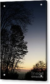 Acrylic Print featuring the photograph Evening Silhouette At Sunset by Bruno Santoro