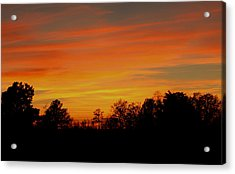 Acrylic Print featuring the photograph Evening Sun by Karen Harrison
