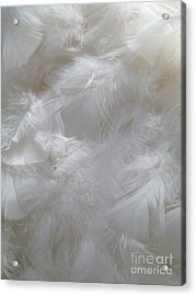 Acrylic Print featuring the painting Evidence Of Angels by Newel Hunter