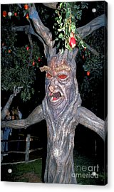 Evil Tree In Oz Acrylic Print by Carl Purcell