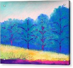 Exciting Landscape Acrylic Print by Karin Eisermann