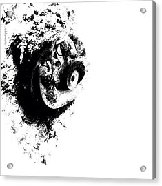 Exposed Acrylic Print