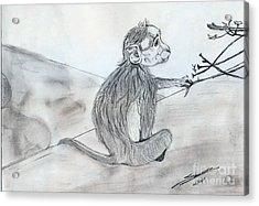 Expression Acrylic Print by Shashi Kumar