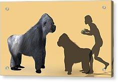 Extinct Giant Gorilla Acrylic Print by Christian Darkin