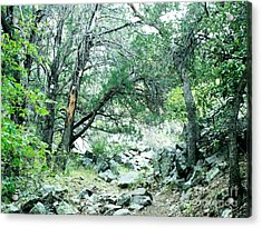 Extreme Hiking In Coronado National Forest Acrylic Print
