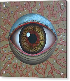 Eye Dew Acrylic Print by Sharon Ebert