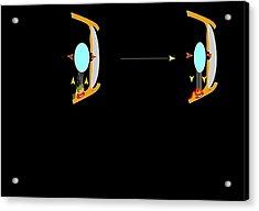 Eye Lens And Accommodation, Artwork Acrylic Print by Francis Leroy, Biocosmos
