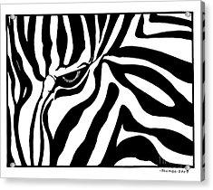 Eye Of The Zebra Acrylic Print