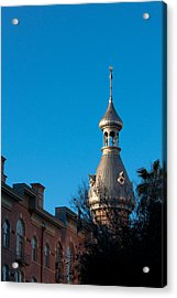 Acrylic Print featuring the photograph Facade And Minaret by Ed Gleichman
