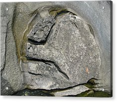 Acrylic Print featuring the photograph Face In The Rock by Brian Sereda