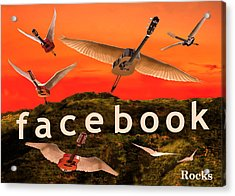 Facebook Rocks Acrylic Print by Eric Kempson
