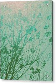 Fading Light Acrylic Print by Bethany Fulford