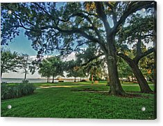 Fairhope Lower Park 4 Acrylic Print by Michael Thomas